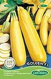 Germisem Golden F1 Semi di Zucchine Giallo 2 g