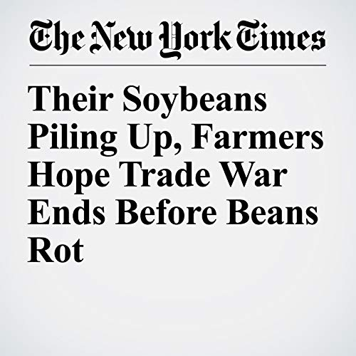 Their Soybeans Piling Up, Farmers Hope Trade War Ends Before Beans Rot audiobook cover art