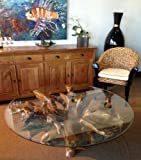SEJAHTERA 55 Inch Glass Top, Teak Wood Root Coffee Table