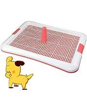 DZL- Bandeja Sanitaria de Adiestramiento Inodoro Interior para Perros Aseo Mascotas Bandeja de Entrenamiento para Mascotas Orinal para Perros Color Azar (L 64 * 47cm)