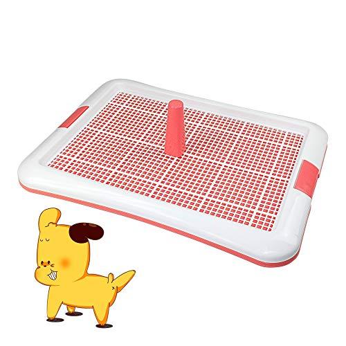 DZL- Vaschetta sanitaria per addestramento, per cani, toilette, animali domestici, vassoio di addestramento per cani, colore casuale (L 64 x 47 cm)