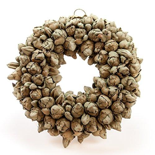 COURONNE Naturkranz Deko Ø30cm in grün, gefertigt aus Kokos-Früchten | Türkranz ganzjährig zum hängen oder als Tischdekoration im Shabby chic Design | Zeitloses Wohnaccessoir als Landhaus Natur-Deko