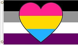 EKRIXI Asexual Panromantic Flag 96cm X 144cm