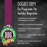 DOGREFORM Kalbsunterbein 1 Stk. Hundefutter - 3