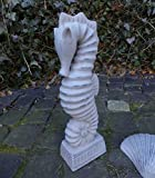 Unbekannt Garten Statue Seepferdchen SEEPFERD 32cm HOCH MARITIM GARTENDEKO TERRAKOTTA NEU