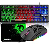 87 Keys Gaming Keyboard and Mouse Combo, USB Wired Rainbow Keyboard and Lightweight RGB Gaming Mouse , 6400 DPI Adjustable, 6 Programmed Buttons, for Laptop PC Computer Game and Work