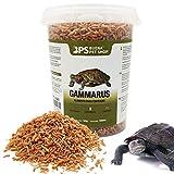 BPS Alimento Comida Gammarus para Tortugas Turtle Terrapin Food 5 Diferentes Modelos para Elegir (Gammarus Alimento 120 g) BPS-04060