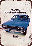 Señal de metal con diseño de hornet de 1970 de la marca AMC Hornet de 30 x 45 cm