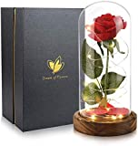Dream of Flowers Beauty and The Beast Rose, Artificial Flowers, Glass Dome Brown Wood Base, Valentine's Party Gifts, Wedding Gifts, Best Gift for Her