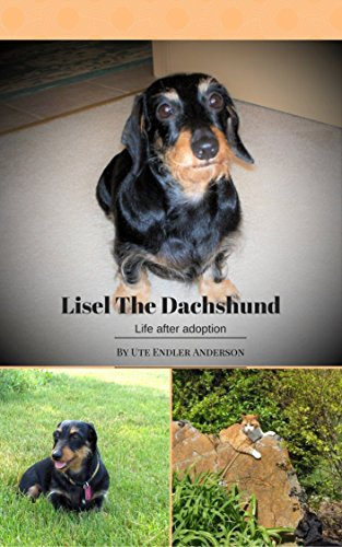 Lisel the Dachshund: Life after adoption (English Edition)