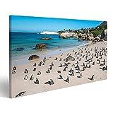 islandburner Bild auf Leinwand Pinguine in Kapstadt