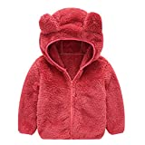 Dreamyth Toddler Infant Bear Ear Fleece Hood Jacket Baby Boys Girls Winter Fall Zipper Lightweight Hoodies 1-5 Years