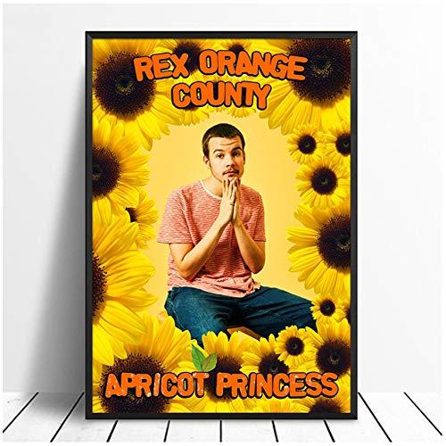 Rex Orange County - Apricot Princess Album Pop Muziek Cover Muziek Ster Poster Canvas Prints Muurkunst voor Woonkamer Thuis Decor-50x70cm-Geen Frame