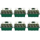 VDYXEW Mini Invernadero – para hasta 12 Plantas por Invernadero, Verde y Transparente (6 Unidades)