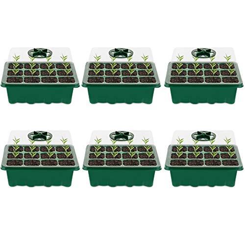 Minstores Mini Gewächshaus - für bis zu 12 Pflanzen Je Zimmergewächshaus, Zimmergewächshaus Anzuchtkasten Mini Gewächshaus ,Grün/Transparent (6 Stücke)