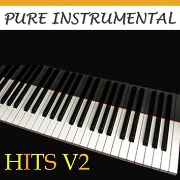 Pure Instrumental: Hits V2