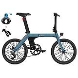 Vélo Électrique, FIIDO D11, Batterie 36V/11.6Ah avec Moteur de 250W, Vélo pour Adulte, Vitesse Maximale de 25 KM/H, Pneu de 20 Pouces, Écran LCD, Vélo Pliant avec Longue Portée