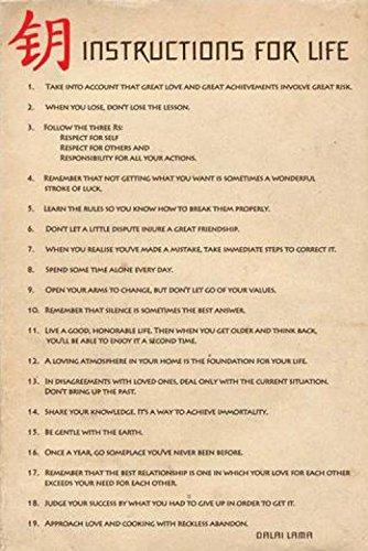 1art1 Dalai Lama - Instructions for Life Poster 91 x 61 cm