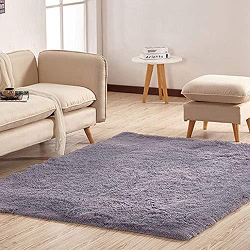 LAMEDER Home Alfombra Interior,Alfombra Grande y Suave y esponjosa en la Sala de estar, alfombra ecológica, gruesa y duradera para dormitorio con diseño Simple, Gris, 100 × 160 cm