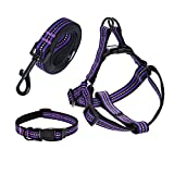"""Mile High Life Night Reflective Double Adjustable Band Nylon Small Puppy Pet Dog Combo Collar Leash and Harness Set (Purple, Small Neck 11""""-15"""" -20 lb)"""