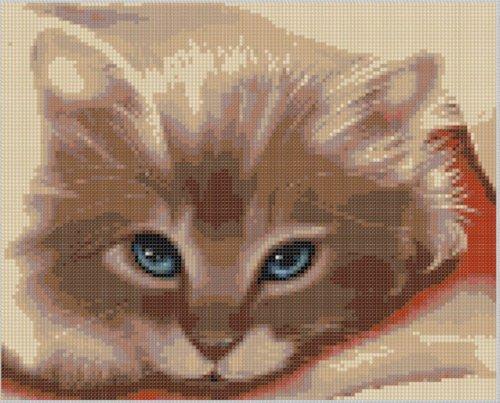 Cat Face Cross Stitch Pattern (English Edition)