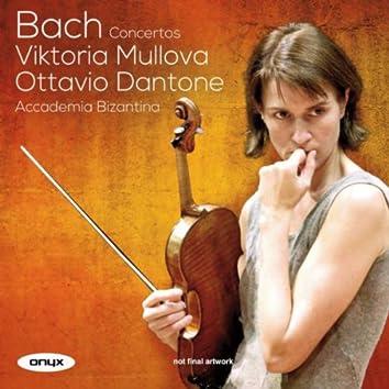 J.S Bach: Concertos