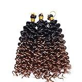 8'(20cm) 3PCS SEGO Pelo Sintético Rizado para Trenzas Africanas [Negro a Castaño Caoba Claro] Extensiones Cabello Se Ve Natural Crochet Twist Braiding Hair Water Wave (60Roots,90g)