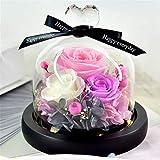 Jamicy  Flores Artificiales Rosa Luz LED Romántica Decoración Rosa Cubierta de vidrio con lámpara Muebles para el Hogar (Rosa)