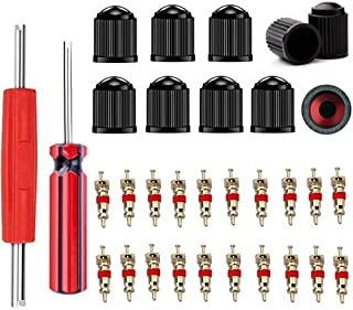 Z&D Valve Core Remover with 20Pcs Schrader Valve Cores Dual Single Head Valve Core Remover Tire Repair Tool