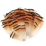 MWOOT 100 Plumas Artesanales, Plumas de Pollo, Amarillo Plumas para Pendiente de Bricolaje Alas Artesanía Ocupaciones Fiesta de Bodas Decoración Hogareña, DIY Craft Feather