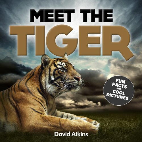 Meet The Tiger : Fun Facts & Cool Pictures (Meet The Cats) (English Edition)