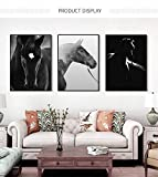 Geiqianjiumai Caballo Blanco y Negro Cuadro Animal decoración del hogar realismo Lienzo Pintura Mural impresión Minimalista nórdico Sala de Estar Cartel Pintura sin Marco 60x80 cm