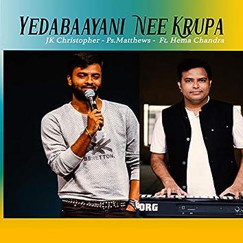 YEDABAAYANI NEE KRUPA (feat. Hema Chandra)