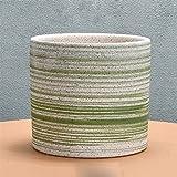 BHJH7 Maceta europea de cerámica grande Maceta suculenta de la serie del hilo del...
