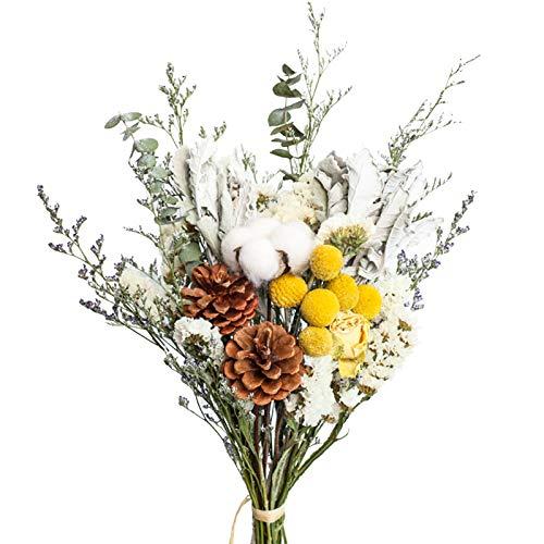 XHXSTORE Ramo de Flores Secas Naturales Flores Seca Eucalipto Conos Pino Algodón...