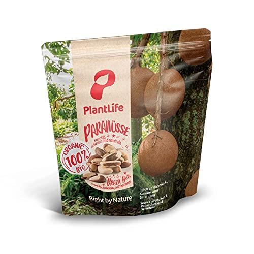 PlantLife Noix du Brésil BIO 1kg – Noix du Brésil brutes, non traitées et naturelles - 100% recyclable