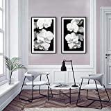 Orchid Bliss Posters Set Prints Nordic Flower Painting Black White Canvas Art Wall Pictures para la Sala de Estar Decoración escandinava (40x60cmx2 / sin Marco)