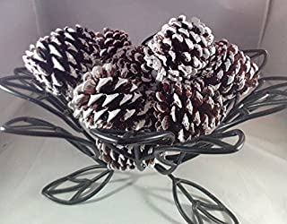 Wreaths For Door 12 White Tipped Ponderosa Natural Pine Cones UNSCENTED 2