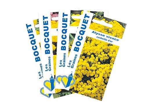 Lot de 4 sachets de Graines de Fleurs Jaunes - Graines Florales à semer