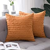 MIULEE 2P 50*50 Fringed pillow cover_09
