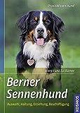 Berner Sennenhund: Auswahl, Haltung, Erziehung, Beschäftigung (Praxiswissen Hund): Auswahl, Haltung, Erziehung, Beschftigung