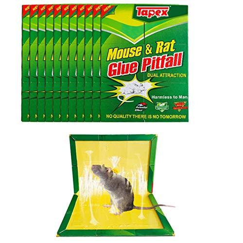 Tapex Piège à Souris, Piège à Rats Efficace, Attrape Souris - 10 Plaques de Glu Collante - Vert, Grande Taille 21 X 35 cm - Pour la Maison et le Jardin