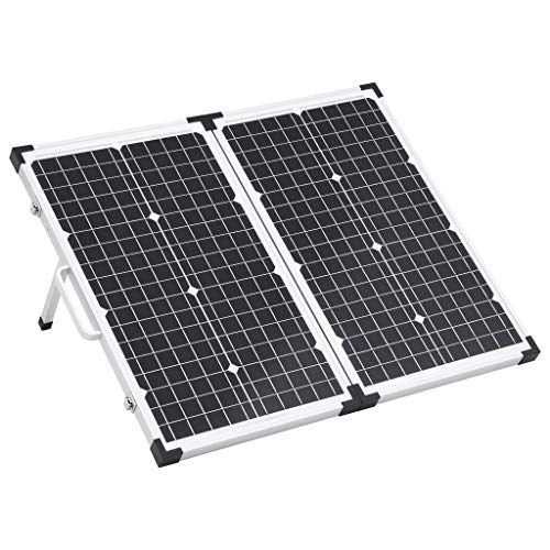 Festnight Maletín con Panel Solar Plegable Panel Solar Portátil Placa Solar Power Bank Paneles Solares 60 W 12 V