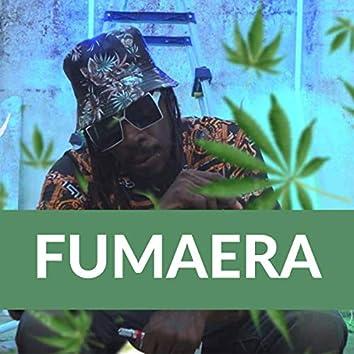 Fumaera