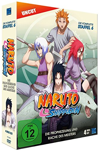 Naruto Shippuden, Staffel 6: Die Prophezeiung und Rache des Meisters (Episoden 333-363, uncut) [4 DVDs]