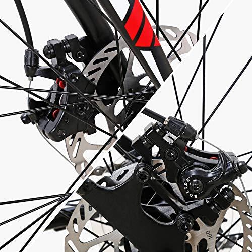 Eurobike Road Bike TSM550 Bike 21 Speed Dual Disc Brake 700C Wheels Road Bicycle 49cm Spoke Wheel
