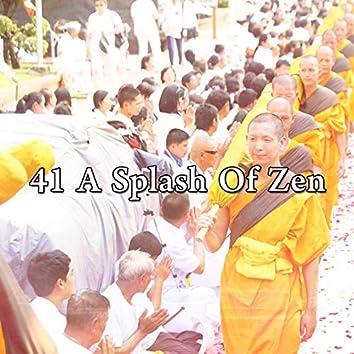 41 A Splash of Zen