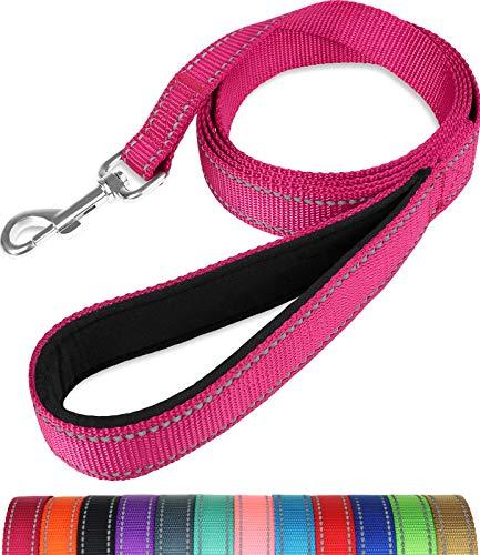 Taglory Hundeleine Reflektierend mit Weich Gepolsterter Griff und Metallhaken, Robuste Leine Hund für Kleine Hunde, 1.2 m x 2.0 cm, Pink