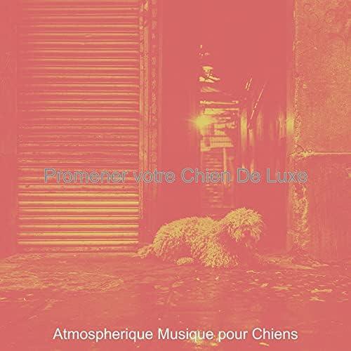 Atmospherique Musique pour Chiens