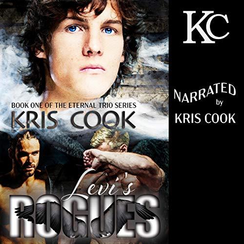 Levi's Rogues audiobook cover art